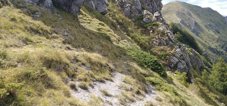 Резерват Козя стена